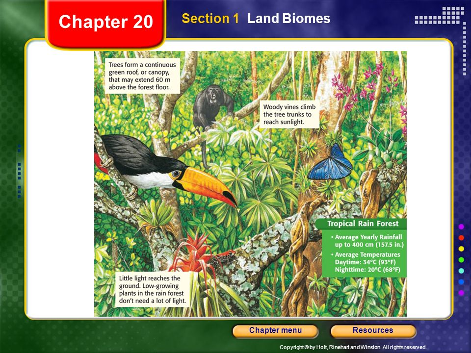 Chapter 20 Section 1 Land Biomes