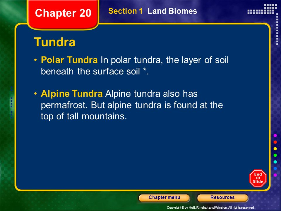 Chapter 20 Section 1 Land Biomes. Tundra. Polar Tundra In polar tundra, the layer of soil beneath the surface soil *.