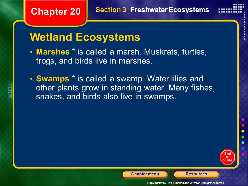 Wetland Ecosystems Chapter 20