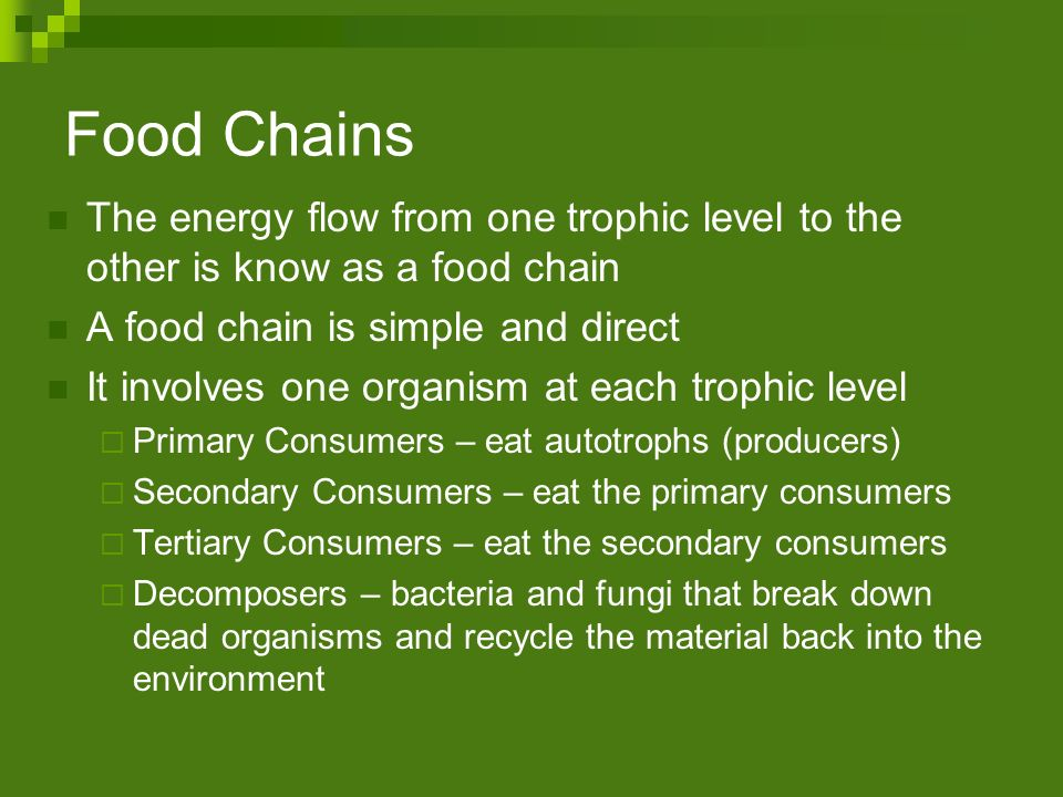 Food Chains The energy flow from one trophic level to the other is know as a food chain. A food chain is simple and direct.