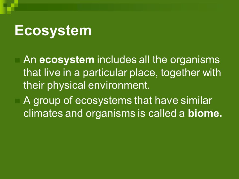 Ecosystem An ecosystem includes all the organisms that live in a particular place, together with their physical environment.