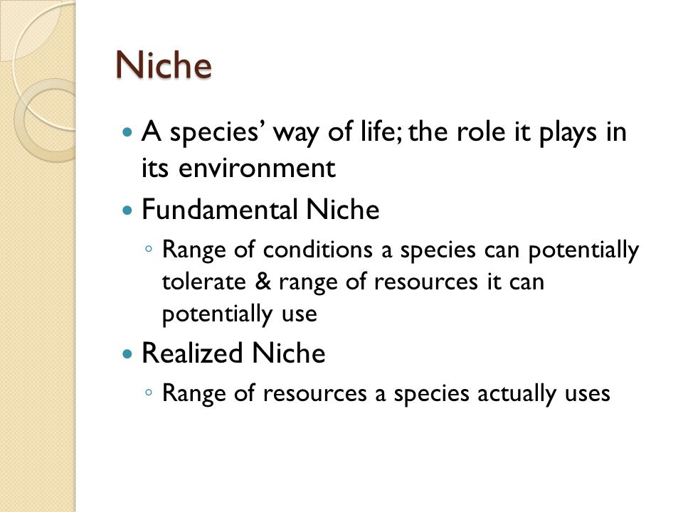 Niche A species' way of life; the role it plays in its environment