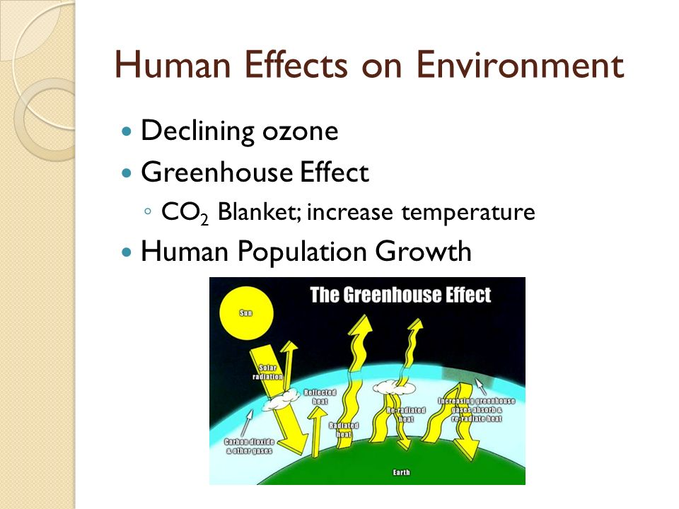 Human Effects on Environment