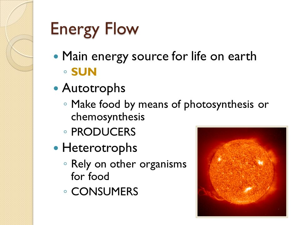 Energy Flow Main energy source for life on earth Autotrophs