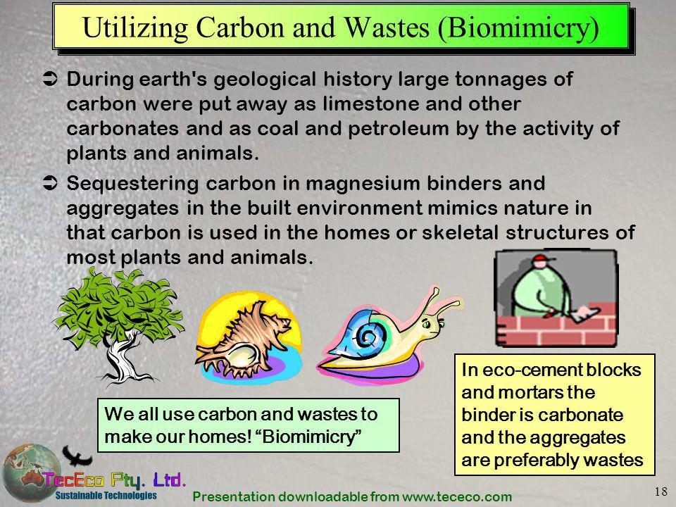 Utilizing Carbon and Wastes (Biomimicry)