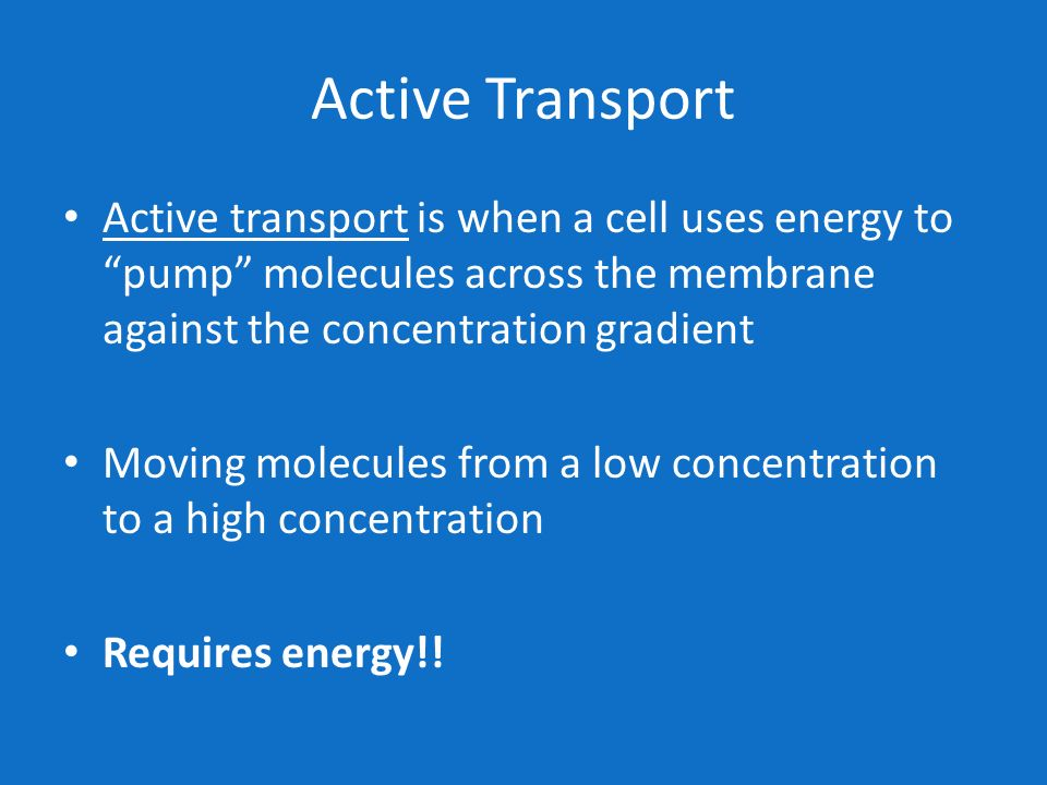 Active Transport Active transport is when a cell uses energy to pump molecules across the membrane against the concentration gradient.