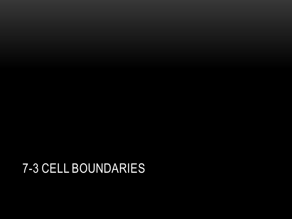 7-3 Cell boundaries