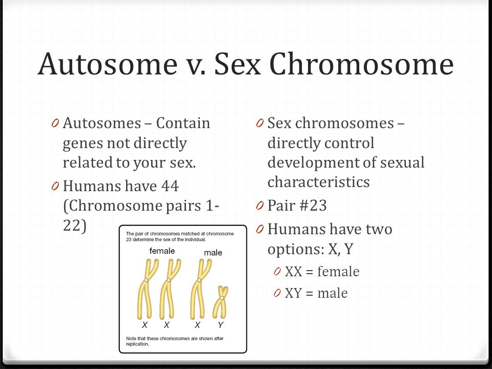 Contrast sex chromosomes with autosomes pics 9