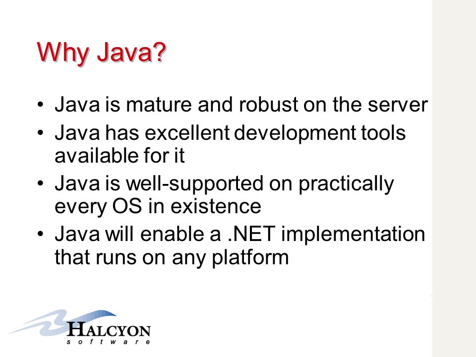 Why Java Java is mature and robust on the server