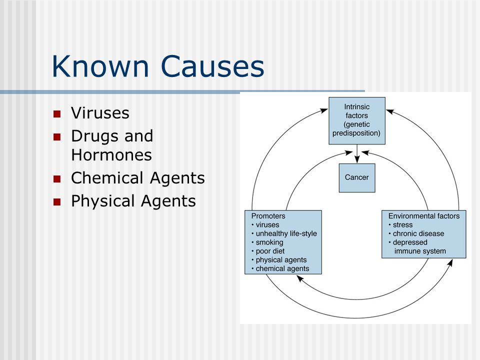 Known Causes Viruses Drugs and Hormones Chemical Agents