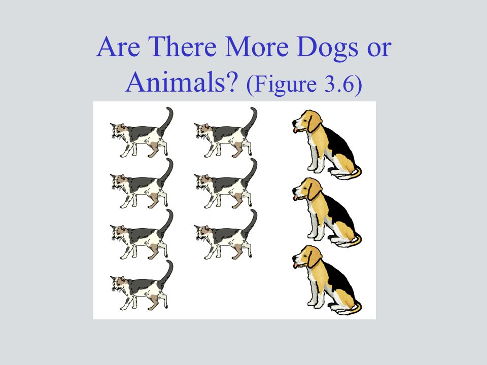 Are There More Dogs or Animals (Figure 3.6)