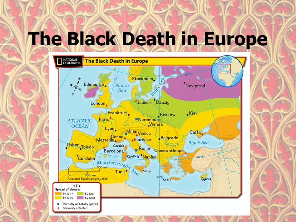 The black death ppt video online download 5 the gumiabroncs Images