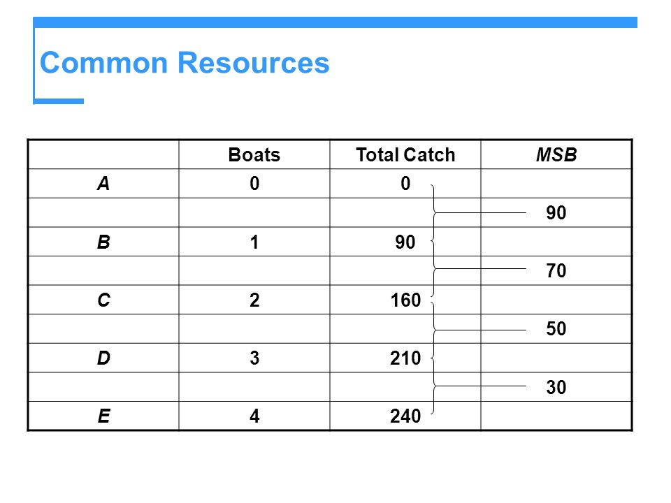 Common Resources Boats Total Catch MSB A 90 B 1 70 C 2 160 50 D 3 210