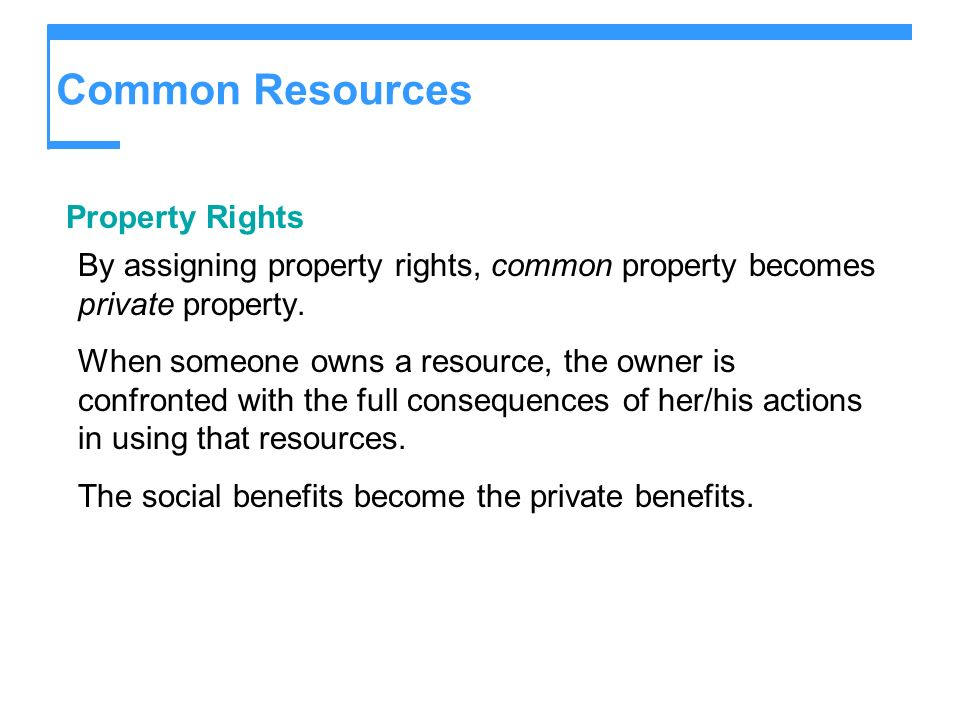 Common Resources Property Rights