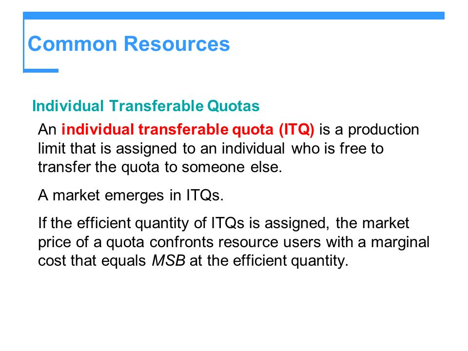 Common Resources Individual Transferable Quotas
