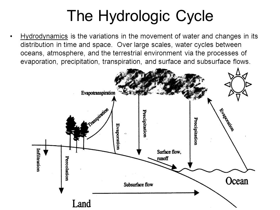 Aquatic ecology biol 435 ppt video online download the hydrologic cycle ccuart Images
