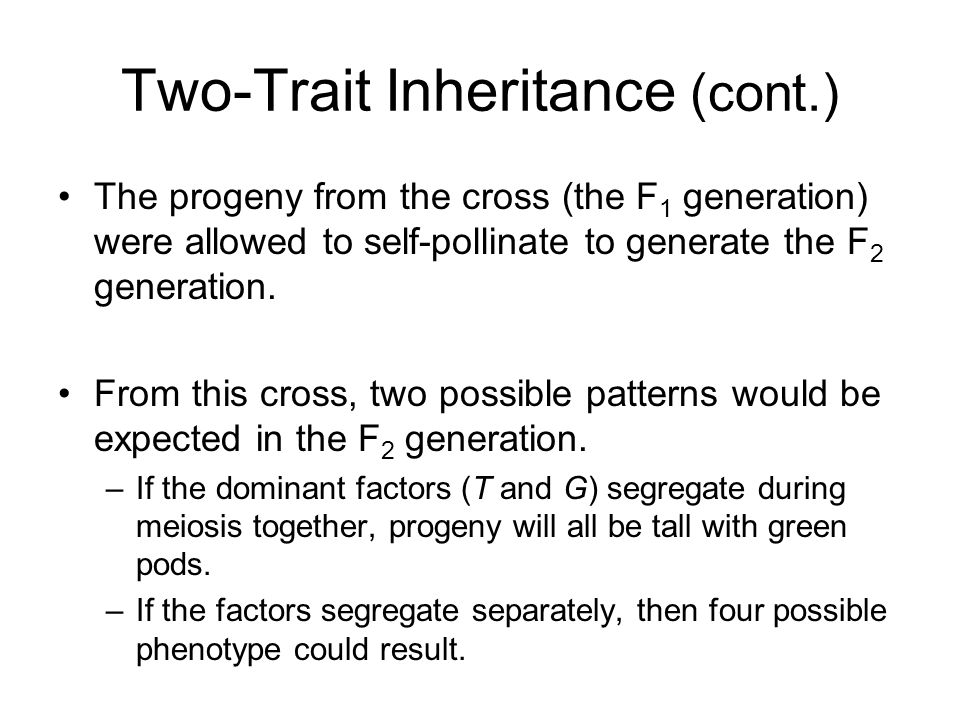 Two-Trait Inheritance (cont.)