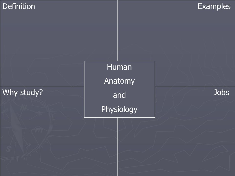 Definition Examples Human Anatomy and Physiology Why study? Jobs ...