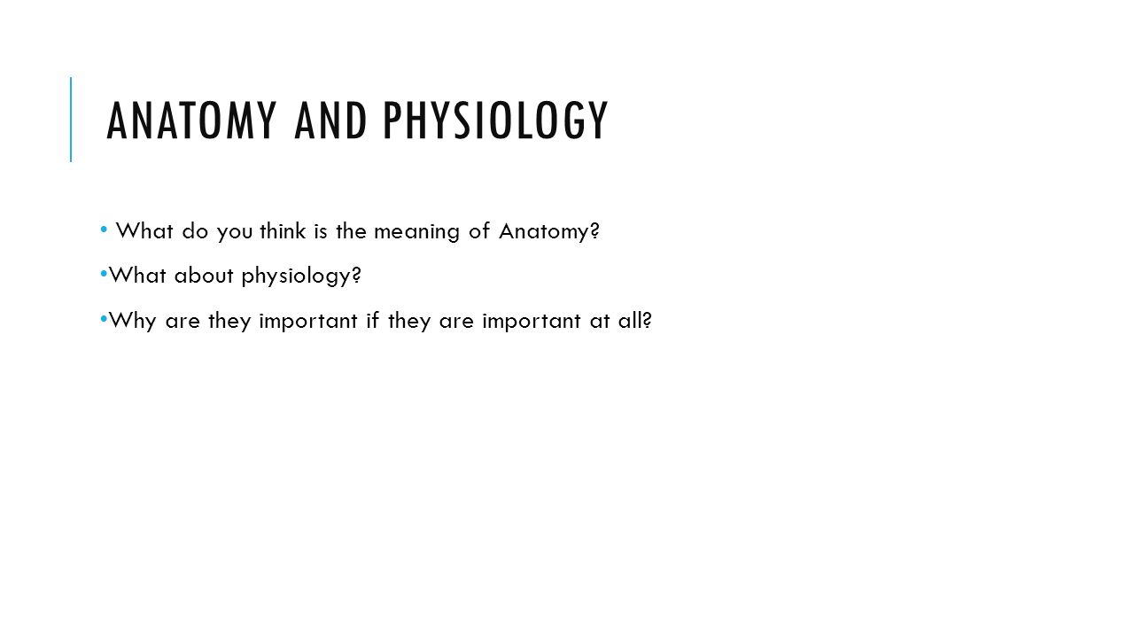 Anatomy and Physiology - ppt video online download
