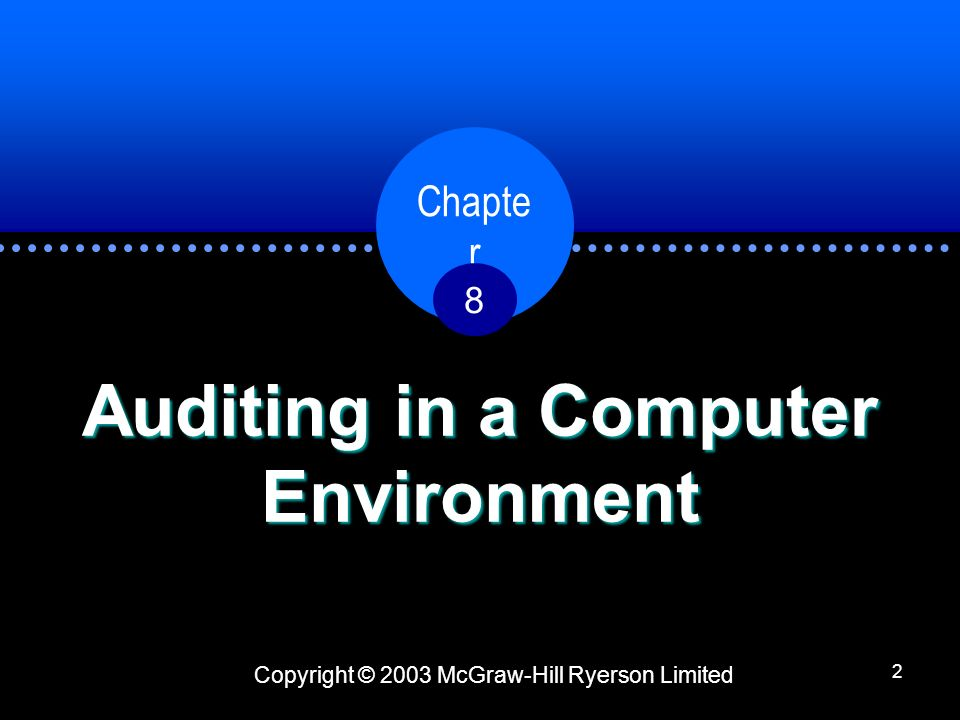 Auditing in a Computer Environment