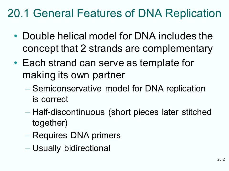 20.1 General Features of DNA Replication