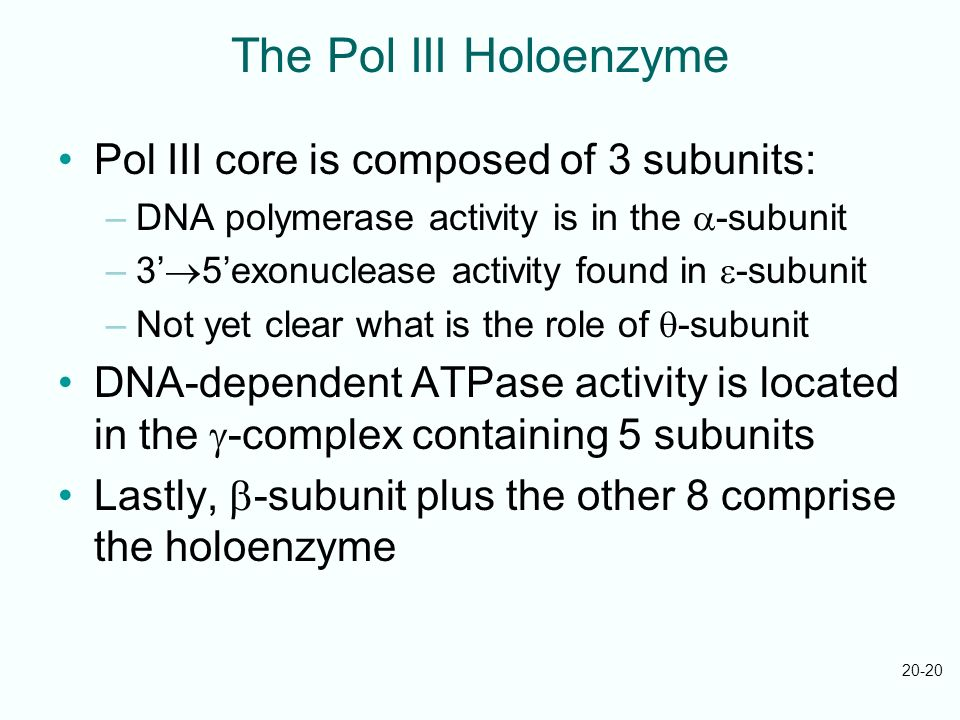 The Pol III Holoenzyme Pol III core is composed of 3 subunits: