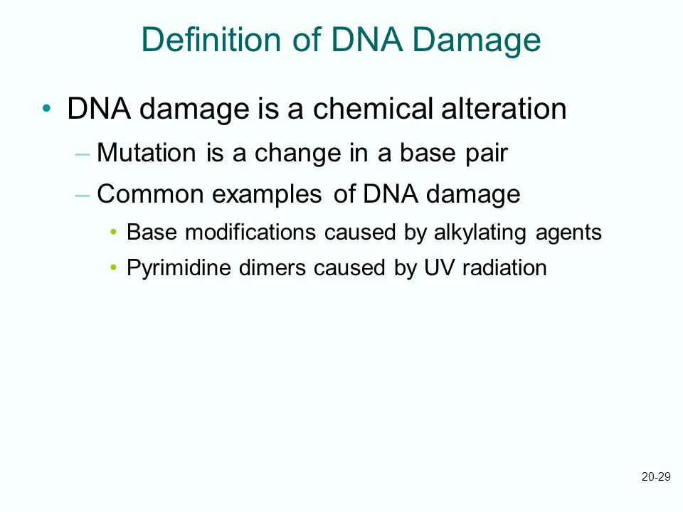 Definition of DNA Damage
