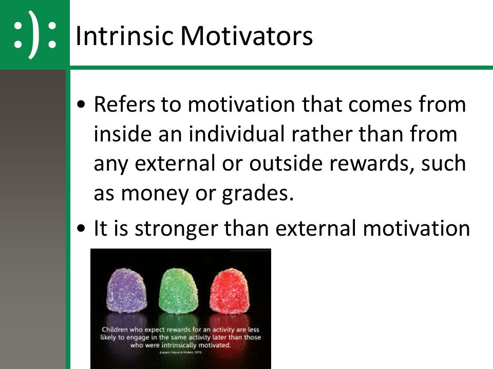 Intrinsic Motivators