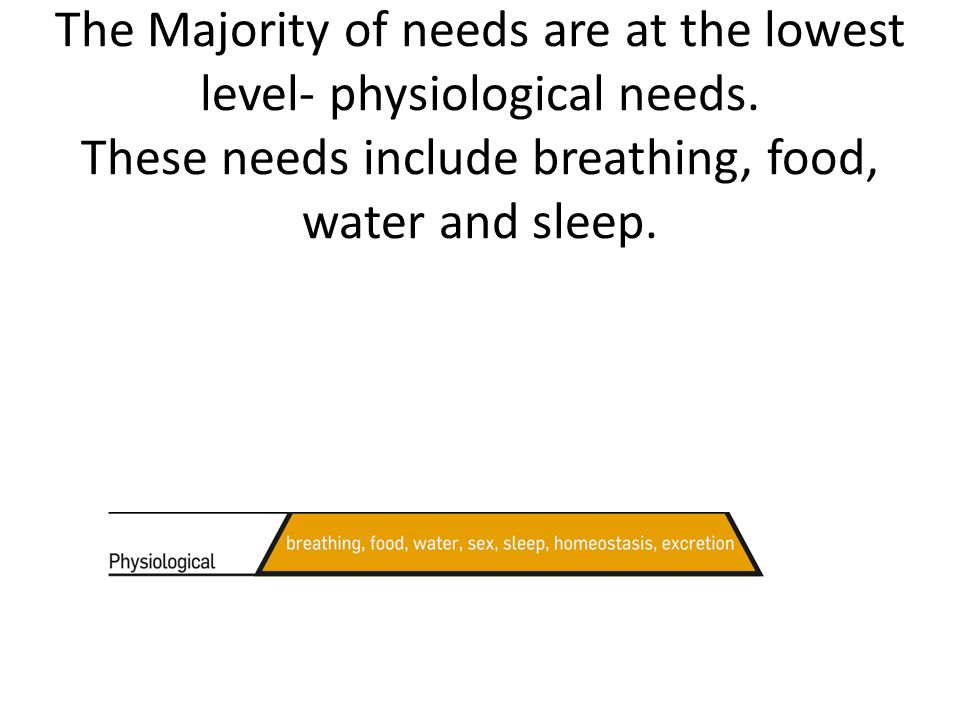 The Majority of needs are at the lowest level- physiological needs