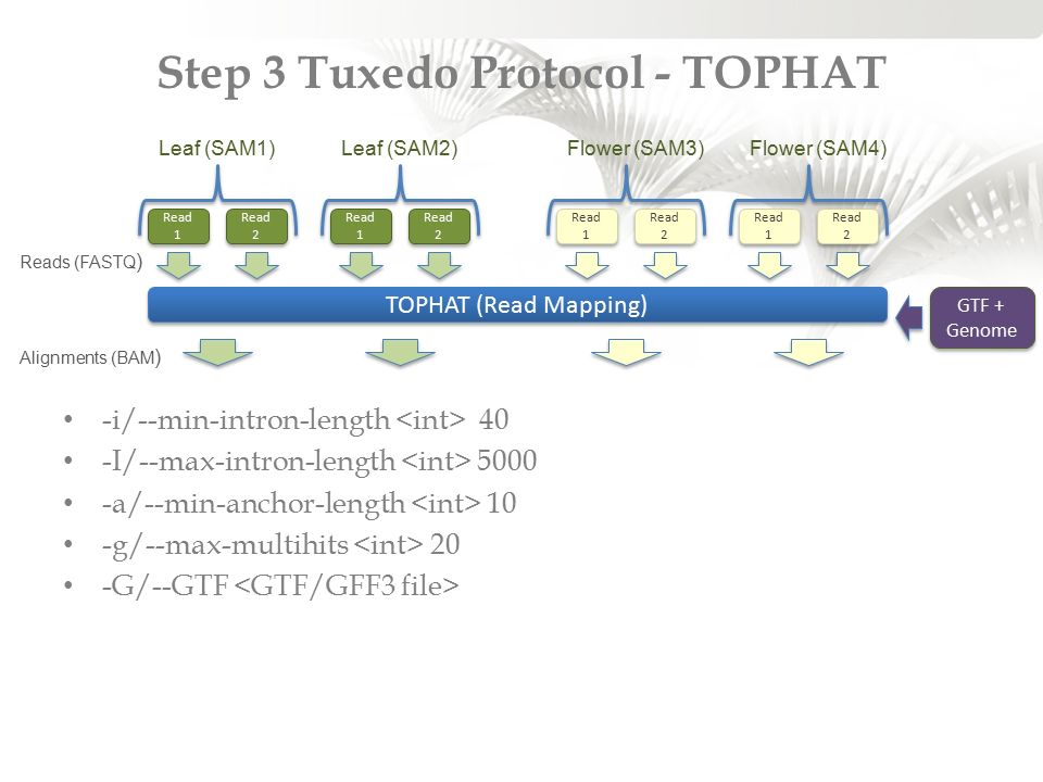 Step 3 Tuxedo Protocol - TOPHAT