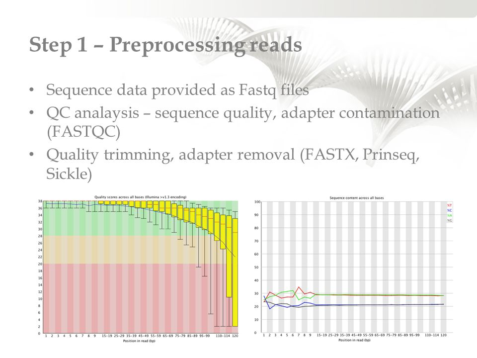 Step 1 – Preprocessing reads