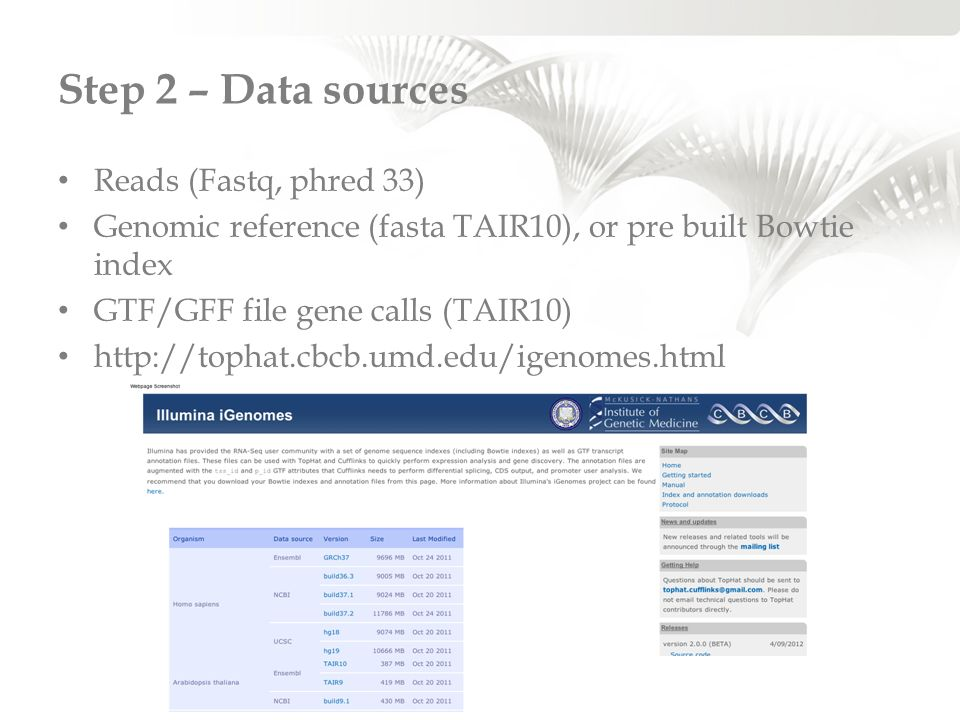 Step 2 – Data sources Reads (Fastq, phred 33)