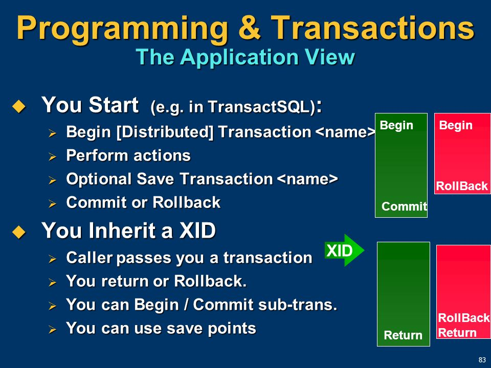 Programming & Transactions The Application View