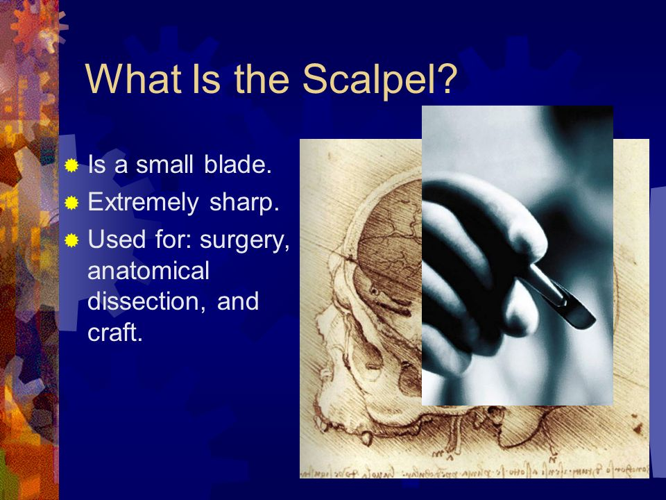 What Is the Scalpel? Is a small blade. Extremely sharp. - ppt download
