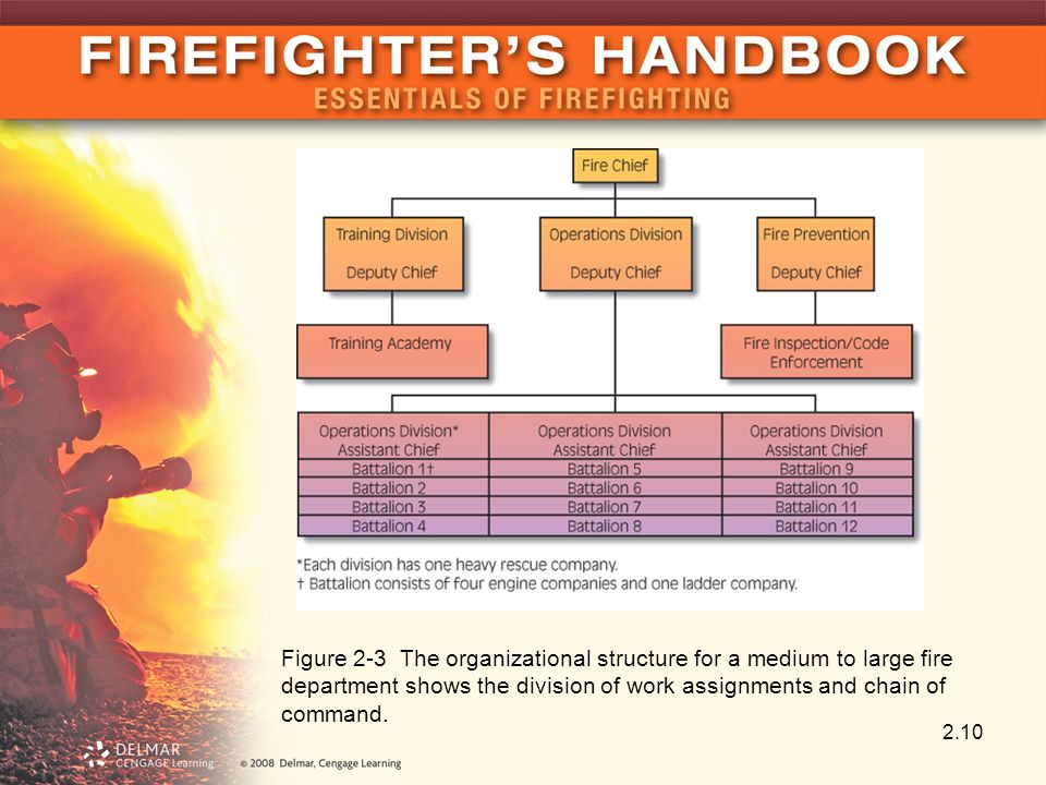 10 Figure 2 3 The Organizational Structure For A Medium To Large Fire  Department Shows The Division Of Work Assignments And Chain Of Command.