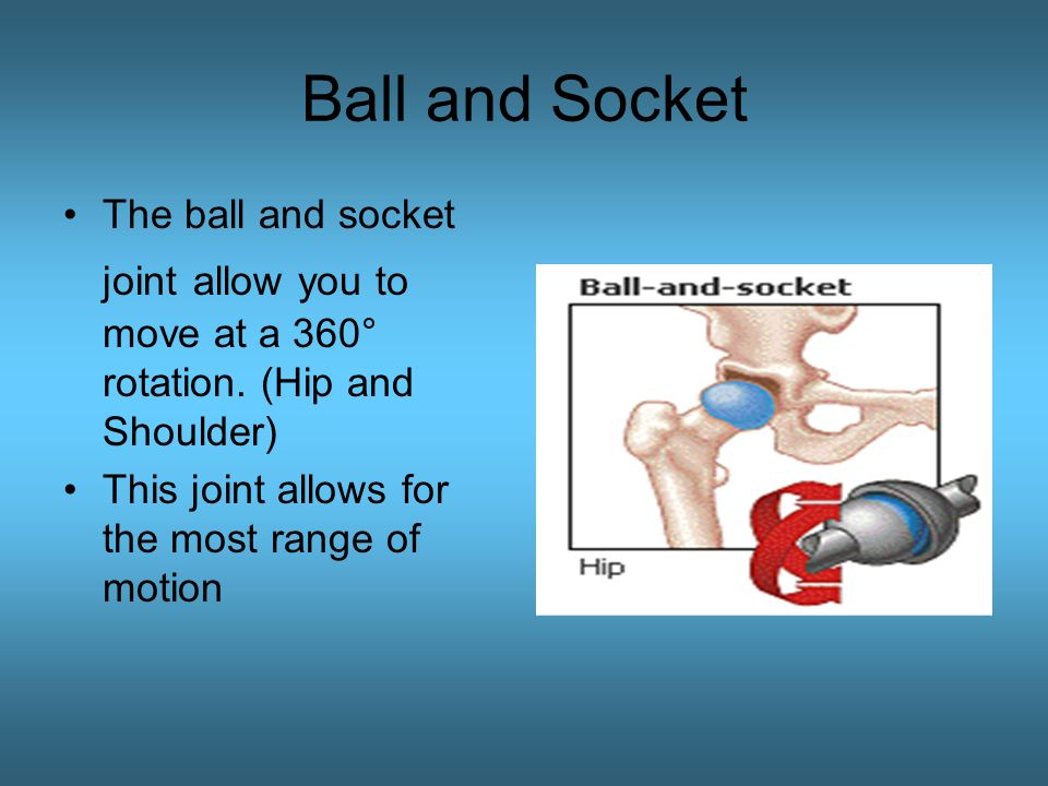 Joints Types And Examples Ppt Video Online Download