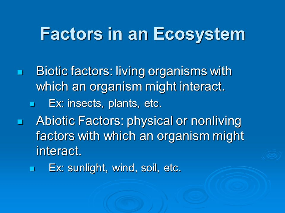 Factors in an Ecosystem