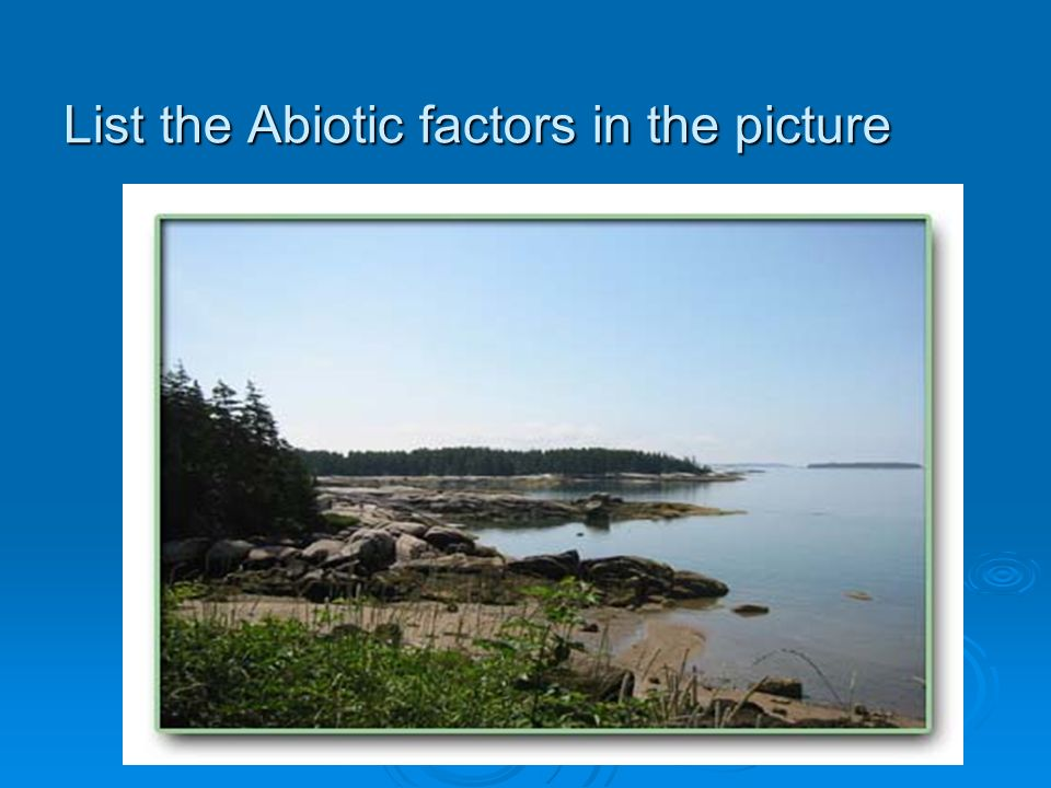 List the Abiotic factors in the picture