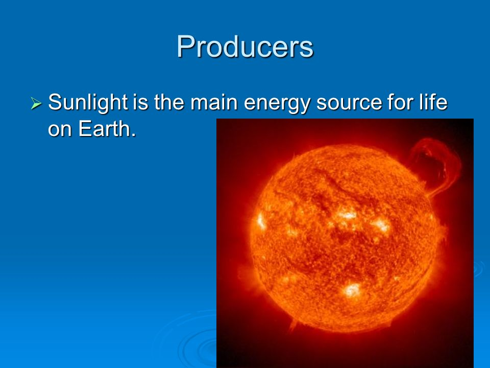 Producers Sunlight is the main energy source for life on Earth.