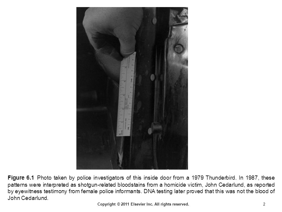 Figure 6.1 Photo taken by police investigators of this inside door from a 1979 Thunderbird.