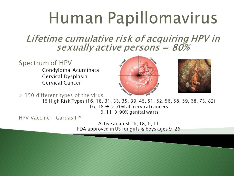Cervical Cancer Screening And HPV