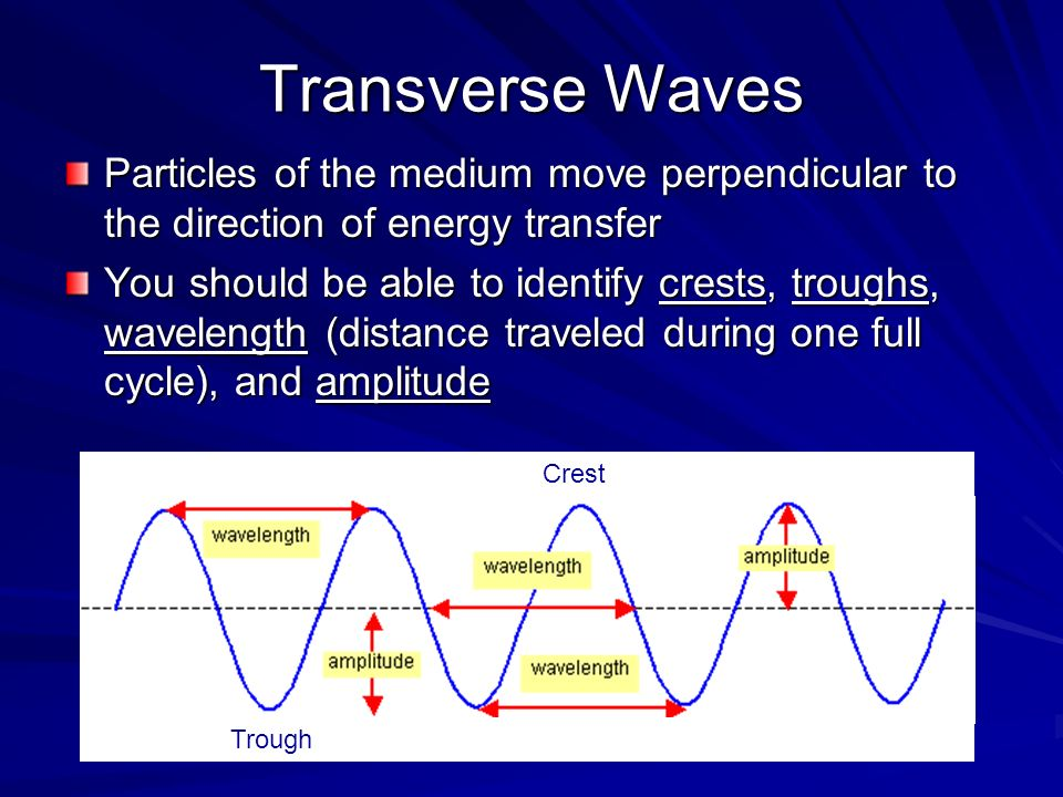 Transverse Waves Particles of the medium move perpendicular to the direction of energy transfer.