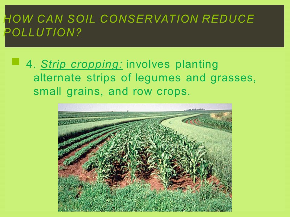 How can soil conservation reduce pollution