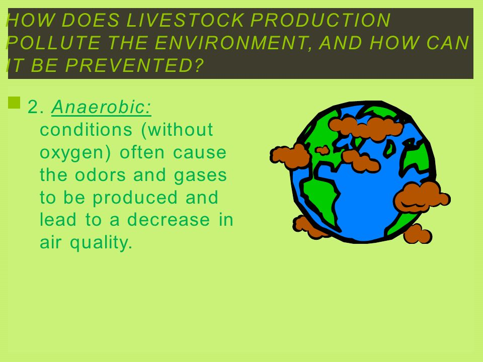 How does livestock production pollute the environment, and how can it be prevented