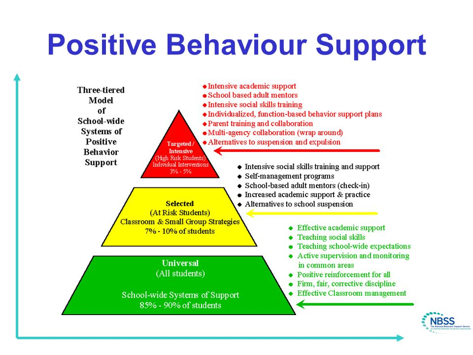 Image result for positive behaviour support model