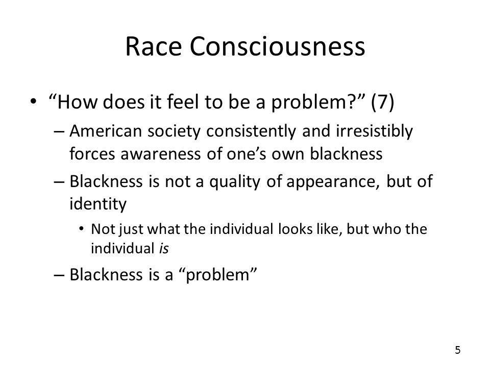 Race Consciousness How does it feel to be a problem (7)