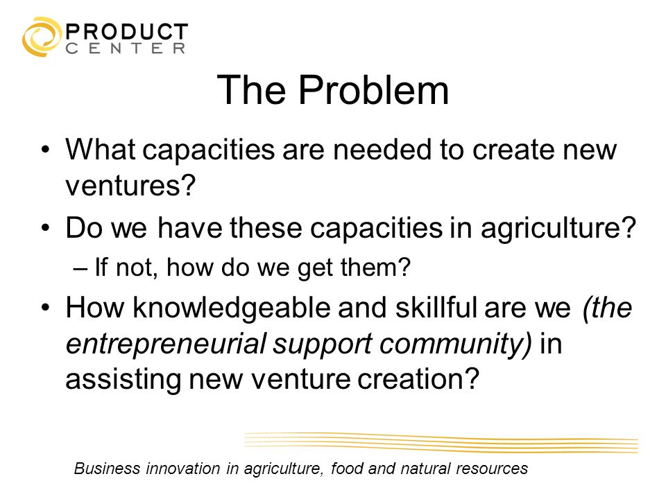 The Problem What capacities are needed to create new ventures