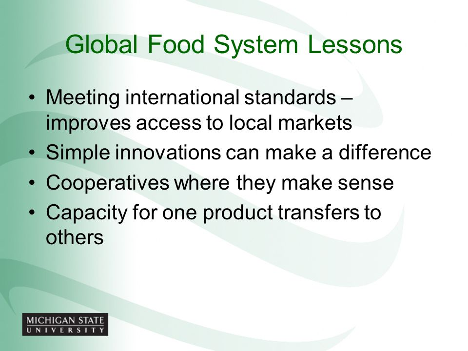 Global Food System Lessons
