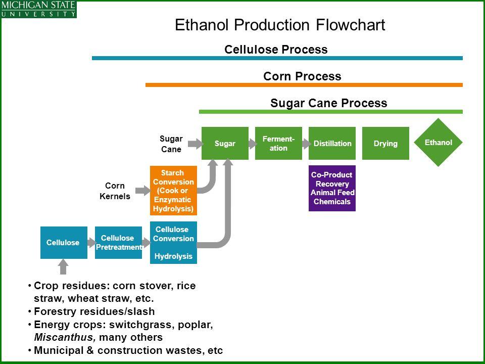 ethanol production from sugarcane pdf