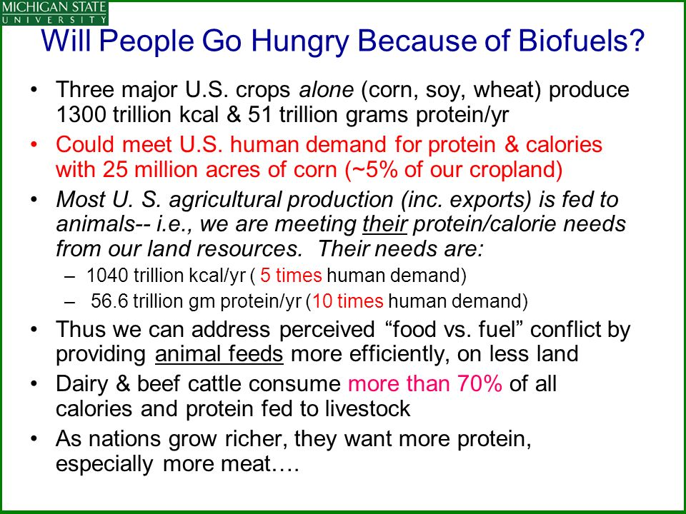 Will People Go Hungry Because of Biofuels